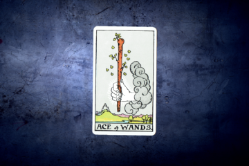Ace of Wands - Rider Deck Blue Box